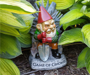 Game of Thrones Gnome gift ideas