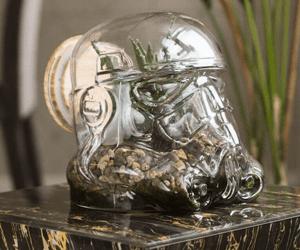 Star Wars Gift Ideas Terrarium